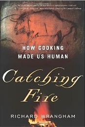 Catching Fire Cooking Made Human